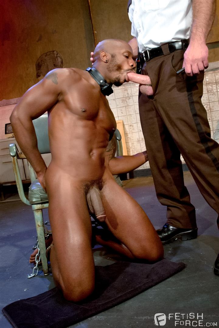 Adult black forum video