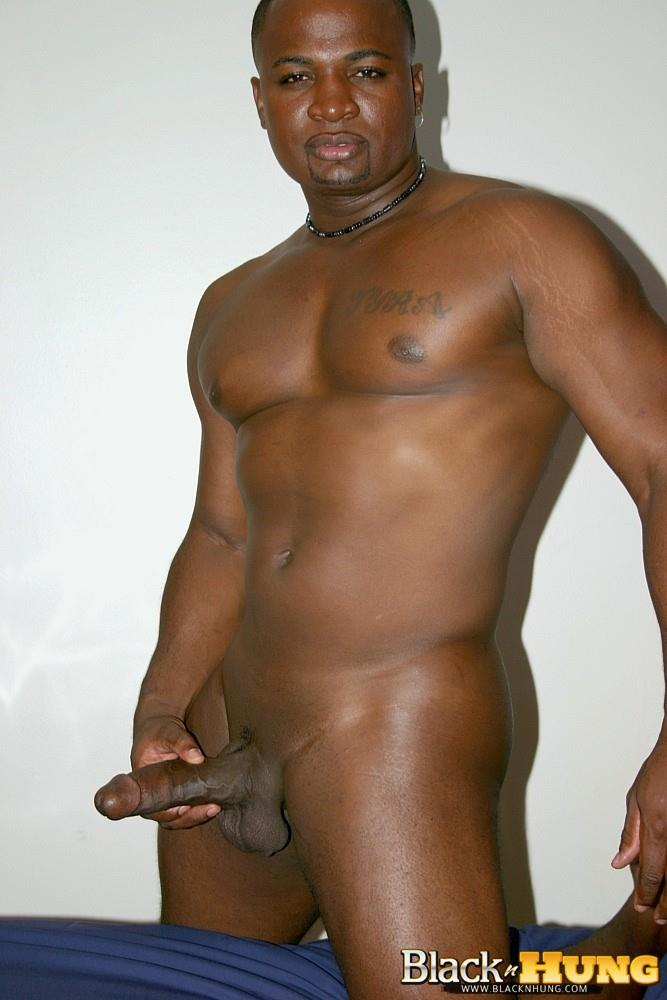 Black N Hung D Total Package Black Muscle Thug Jerking His Thick Black Cock Amateur Gay Porn 12 Black Muscle Thug Jerking Off His Thick Black Cock