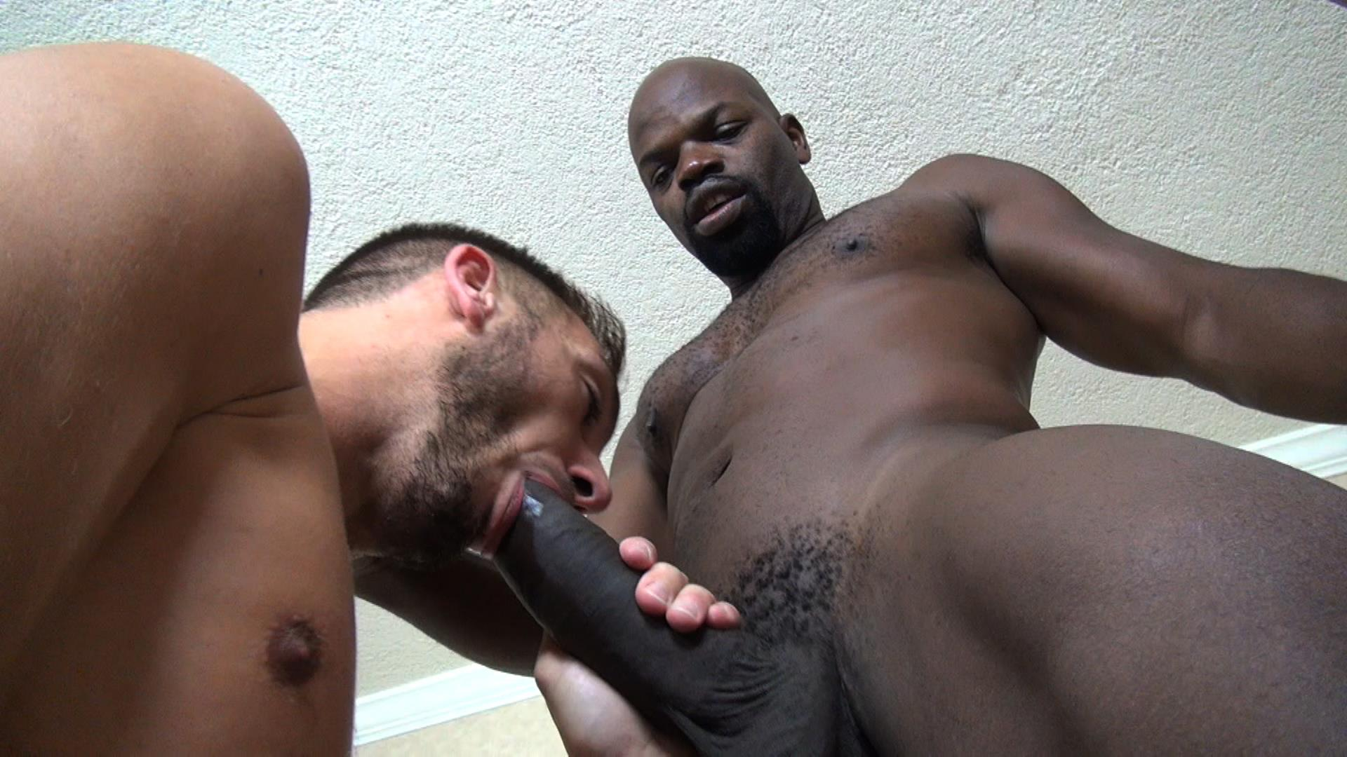 sucking big dicks in public gay