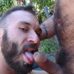 Cum Pig Men Alessio Romero and Ethan Palmer Hairy Muscle Latino Daddy Cocksucking Amateur Gay Porn 48 150x150 Hairy Latino Muscle Daddy Gets A Load Sucked Out And Eaten